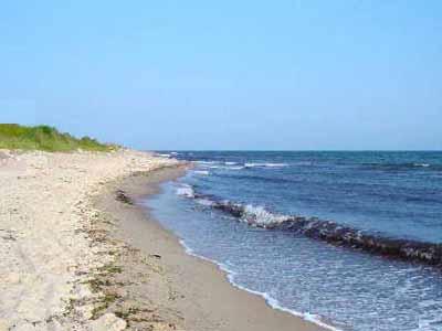 Strandabschnitt Ostsee1_w
